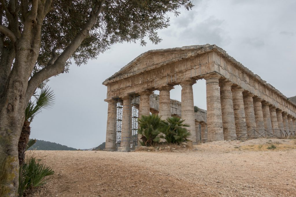 Segesta temple under an olive tree on Sicily